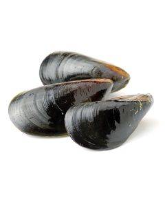 Mussels Whole Shell Frozen 1Kg