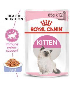 Feline Health Nutrition Kitten Jelly (WET FOOD - Pouches)