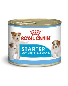 Canine Health Nutrition Starter Mousse (WET FOOD - Cans)